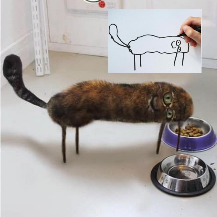 kids drawing of a cat hilarious